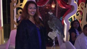 Saima & Falcon